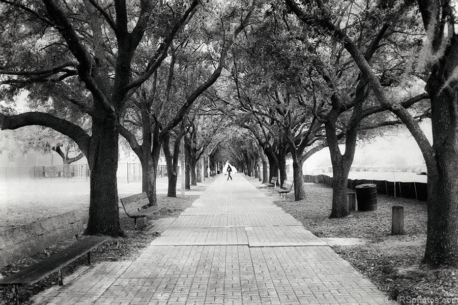 187 Sidewalk Jrsphotos Com